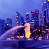 居住最贵的城市:新加坡最近刚击败东京成为2014年居住费用第一的城市,新加坡的汽车可能是英国美国的4-6倍。