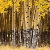 高处,心似大树直立担当;低处,心似小草平和谦让。