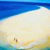 海豚湾———坐落于距离澳洲阳光之都澳大利亚布里斯班30公里处的海面上,有一个小岛叫摩顿岛。